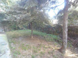 giardino....